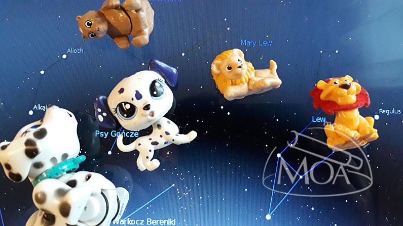 Zabawkowe gwiazdozbiory