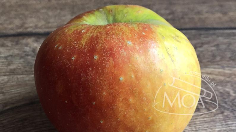 Jabłko!